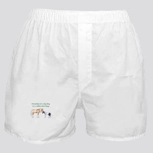 FRIENDSHIP ISNT A BIG THING Boxer Shorts