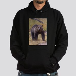 Yellowstone Grizzly Hoodie (dark)