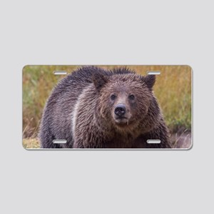Yellowstone Grizzly Aluminum License Plate