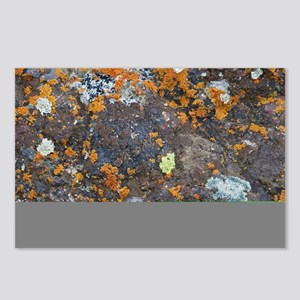 Lichen and Rock Postcards (Package of 8)