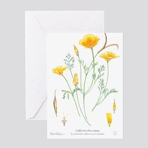 California dune poppy (Eschscholzia californica) G