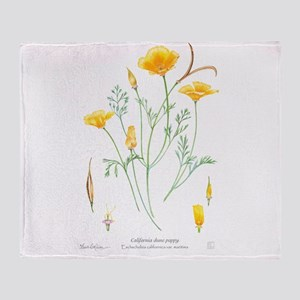 California dune poppy (Eschscholzia californica) T