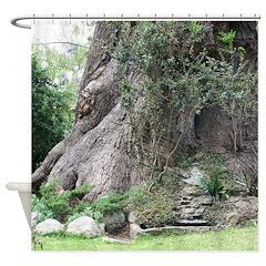 Eucalyptus Tree Shower Curtain