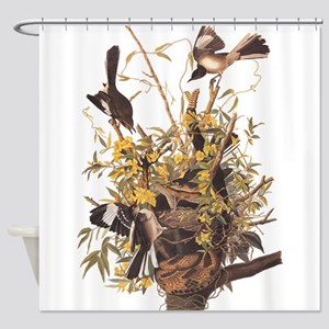 Audubon's Mocking Bird Shower Curtain