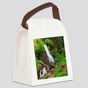 waterfall in Val di Sole Canvas Lunch Bag