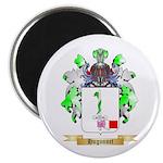 Hugonnet Magnet