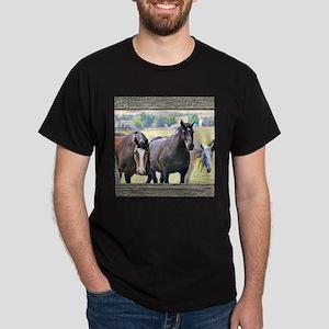 Old window 3 horses Dark T-Shirt