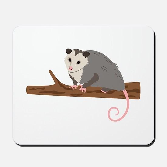 Opossum on Branch Mousepad