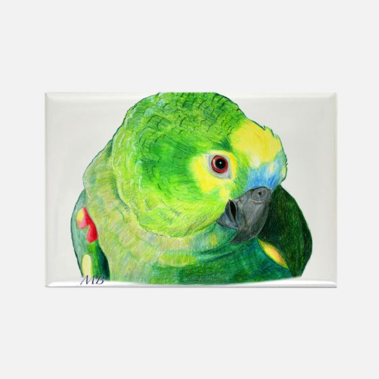 Blue-Fronted Amazon Magnets