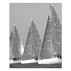 borderlerless black + white sailing small posters