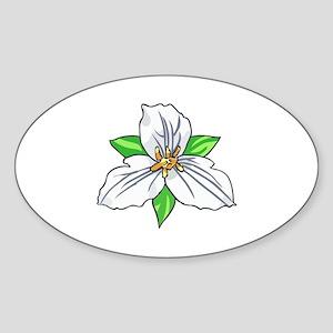 TRILLIUM FLOWER Sticker