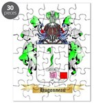 Hugonneau Puzzle
