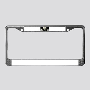 Pug Puppy License Plate Frame