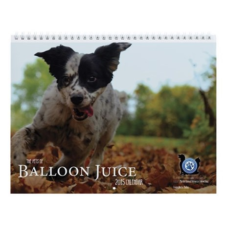 The Pets Of Balloon Juice 2015 Wall Calendar