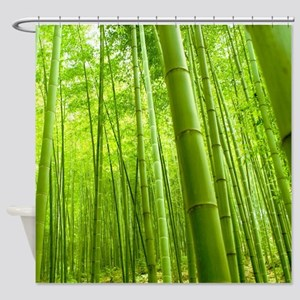 Bamboo Perspective Shower Curtain