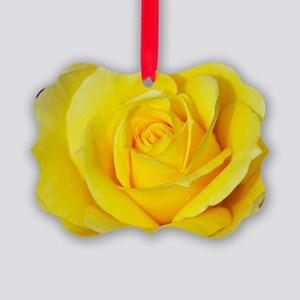 Beautiful single yellow rose Picture Ornament