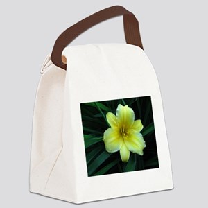 IMG_5784crop2adj2layerfix Canvas Lunch Bag