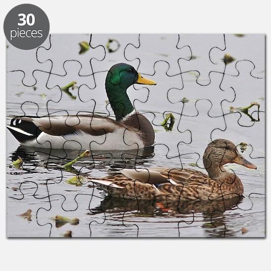 Funny Mallard Puzzle
