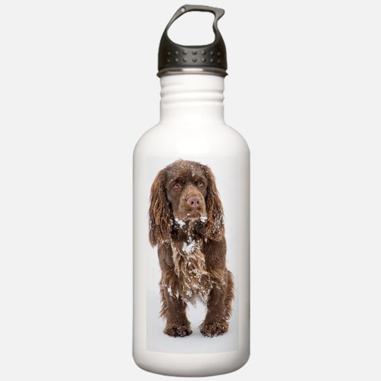 Snowy Sussex Spaniel Water Bottle