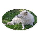 White Wolf Oval Sticker