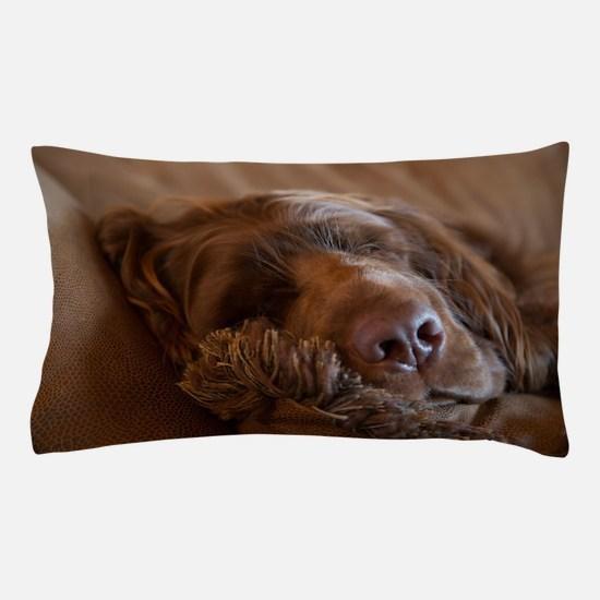 Unique Sussex spaniel Pillow Case