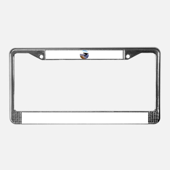 Hang Gliding Over the Californ License Plate Frame