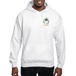 Huge Hooded Sweatshirt