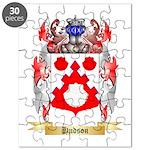 Hudson Puzzle