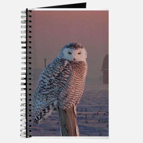 Unique Owl Journal