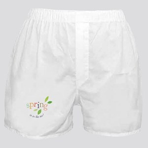 Spring In The Air Boxer Shorts