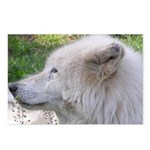 White Wolf Postcards (Package of 8) #3