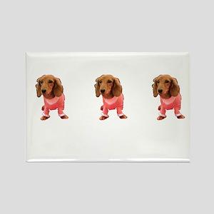 Majestic Pink Dachshund Cutie Designer Magnets