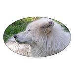 White Wolf Oval Sticker #2
