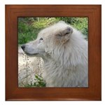 White Wolf Framed Tile #2