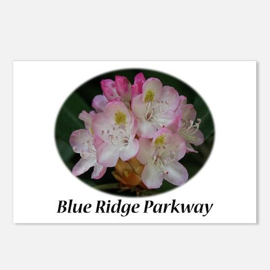 Blue Ridge Parkway Postcards (Package of 8)