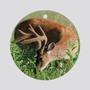 BUCK in Great Smoky Mtns Ornament (Round)