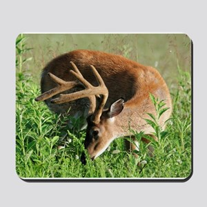 BUCK in Great Smoky Mtns Mousepad