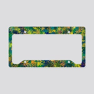 Abstract Leaf Pattern License Plate Holder