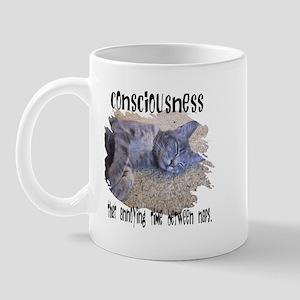Consciousness Is Mug