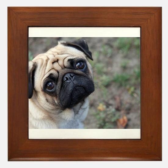 Pug Framed Tile