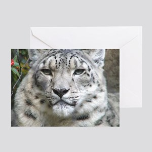 Wildcrds Snow Leopard Greeting Cards (6)