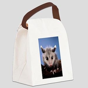Cute Opossum Canvas Lunch Bag