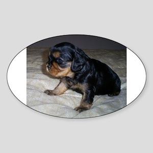 black and tan puppy Sticker