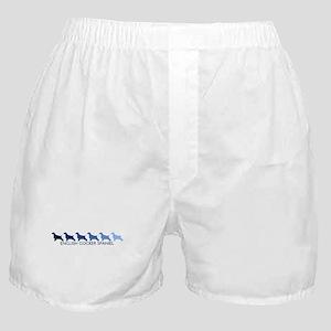 English Cocker Spaniel (blue  Boxer Shorts