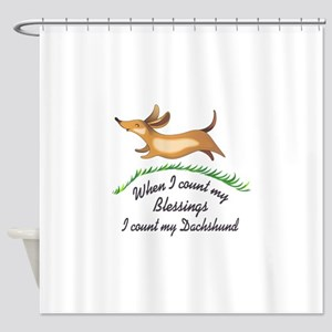 DACHSHUND BLESSINGS Shower Curtain