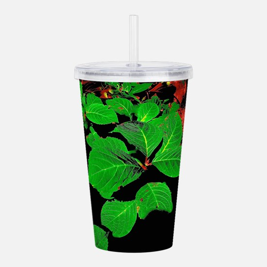 Green And Red Leaves Acrylic Double-wall Tumbler