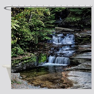 Eagle Cliff Falls 1 Shower Curtain