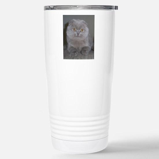 lilac Scottish Fold cat Stainless Steel Travel Mug