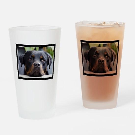 Rottweiler Dog Drinking Glass