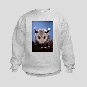 Cute Opossum Kids Sweatshirt